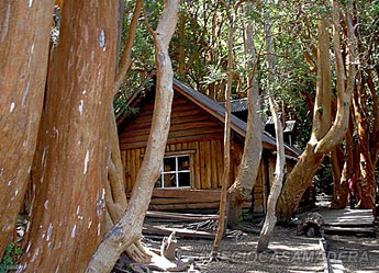 Que es una caba a de madera casas de madera y - Legislacion casas madera ...